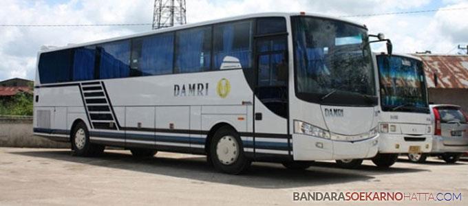 Bus Damri - pontianak.tribunnews.com