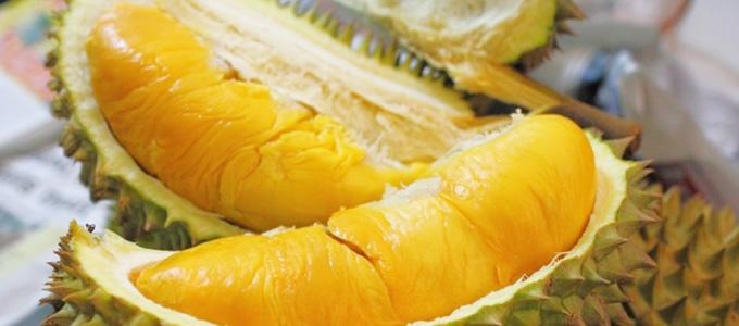 Festival Durian di Bandara Soetta 23-24 Januari 2020 - www.infotanamanbuah.com