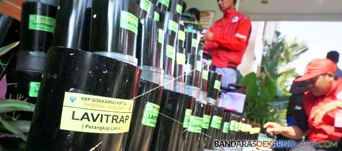 KKP) Bandara Soekarno-Hatta (Soetta) menyiapkan alat Lavitrap